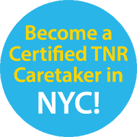 Become a Certified TNR Caretaker in NYC!
