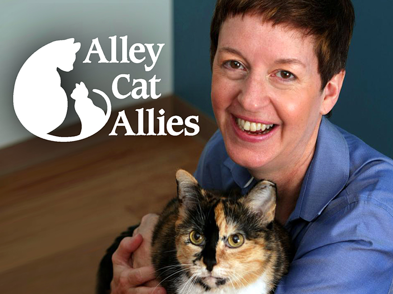 Alley Cat Allies: Becky's Blog