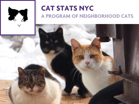 Cat Stats NYC - A Program of Neighborhood Cats