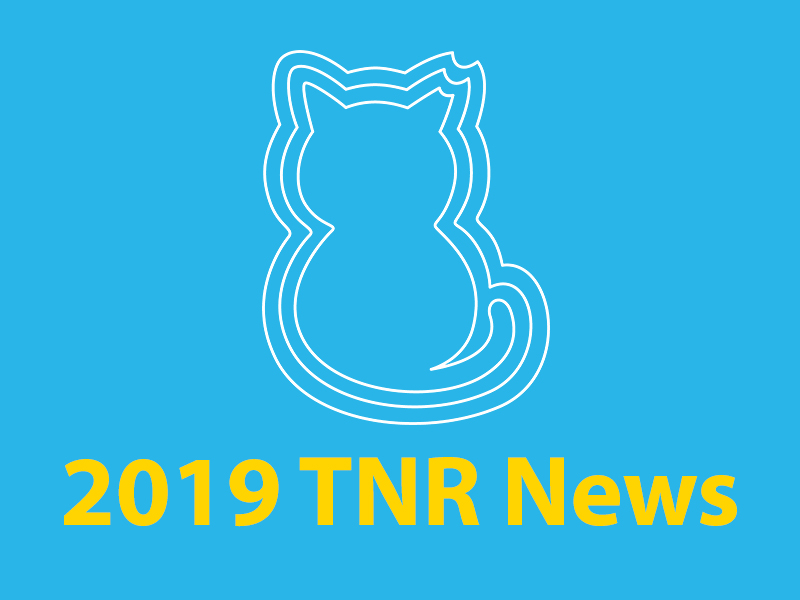 Community Cats & TNR in the News - 2019