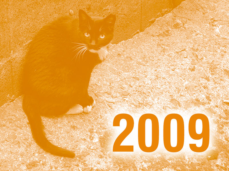 Community Cats & TNR in the News - 2009