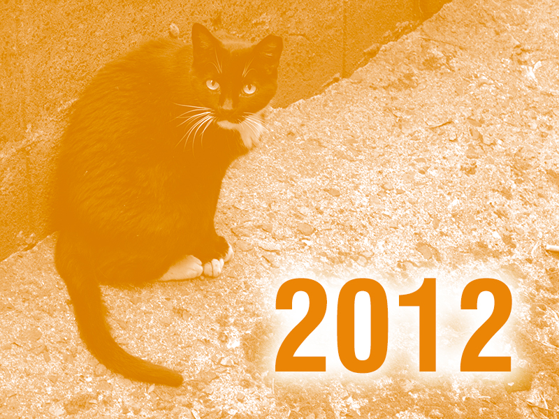Community Cats & TNR in the News - 2012