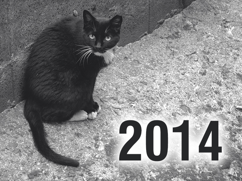 Community Cats & TNR in the News - 2014