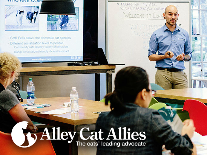 Alley Cat Allies Webinars