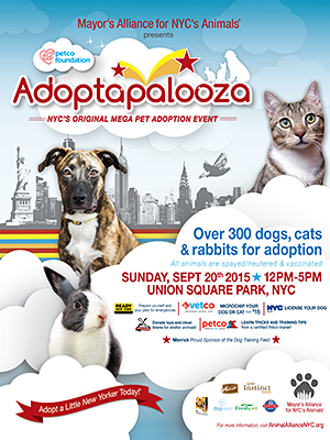 Adoptapalooza Union Square - Sunday, September 20, 2015