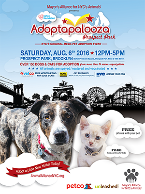 Adoptapalooza - Saturday, August 6, 2016