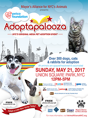 Adoptapalooza Union Square - Sunday, May 21, 2017
