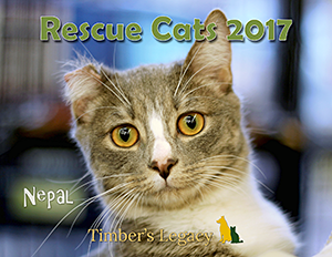 Timber's Legacy: Rescue Cats 2017 Calendar