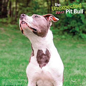The Unexpected Pit Bull: 2017 Calendar