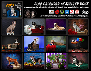 Westchester County Shelters: 2018 Calendar of Shelter Dogs