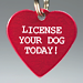 License Your Dog