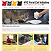 New NYC Feral Cat Initiative Website Has Something for Everyone