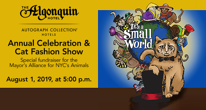 8/1: The Algonquin Cat's Annual Celebration & Cat Fashion Show