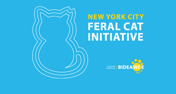 New York City Feral Cat Initiative, a Program of Bideawee