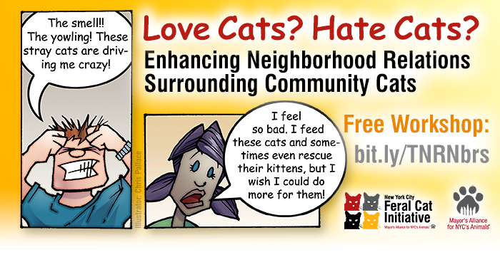 Free Workshop: Enhancing Neighborhood Relations Surrounding Community Cats